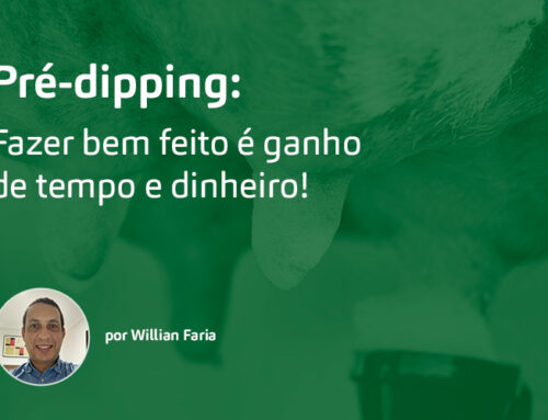 Pré-dipping: fazer bem feito é ganho de tempo e dinheiro!